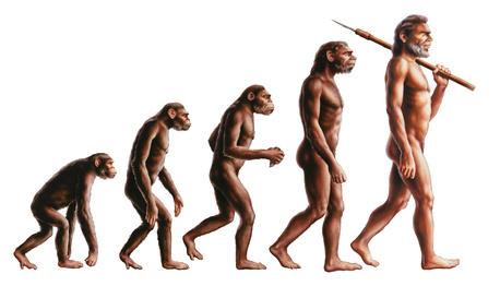 Paleo Diät - Steinzeiternährung