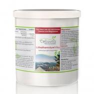 Lithothamnium Vita (100 % Rotalge) von Cellavita - 450 KPS