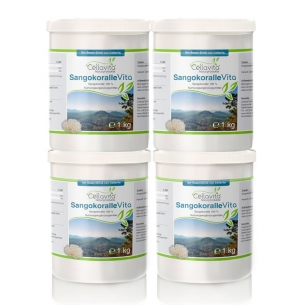 Sangokoralle Vita - Der Basendrink (SANGO-PUR) Vorsorgepaket 4 x 1kg von Cellavita