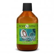 LIPOSOMALES HIRN-VITAL von ECHT VITAL