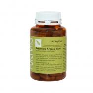 Artemisia Kapseln von PuraVita