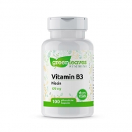 Vitamin B3 Niacin 100 mg von greenleaves vitamins