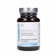 Brain plus von Life Light