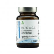 Head Well von Life Light