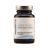 Leber Phase 1 von Life Light