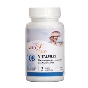 MITOcare® VITALPILZE