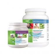 Reset Pack Beere von Platinum Health