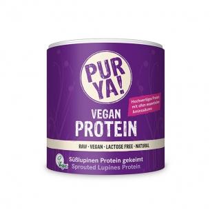 PURYA! Protein Süsslupinen gekeimt